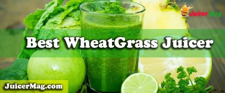 Best WheatGrass Juicer - JuicerMag