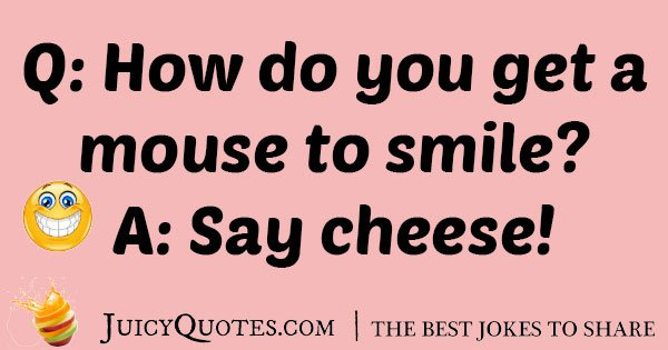 Mouse And Cheese Joke With Picture