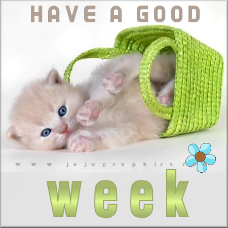 Have A Good Week 4 Graphics Quotes Comments Images