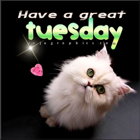 Have A Great Tuesday 23 Graphics Quotes Comments