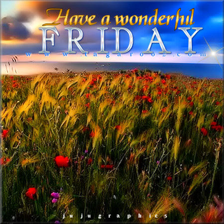 Have A Wonderful Friday 16 Graphics Quotes Comments Images Amp Greetings For Myspace