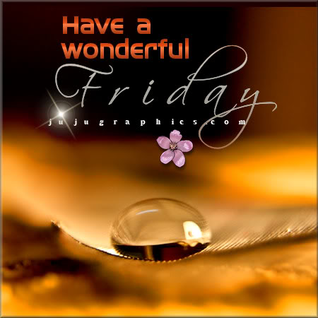 Have A Wonderful Friday 5 Graphics Quotes Comments