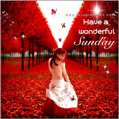 Have A Wonderful Sunday 7 Graphics Quotes Comments Images Amp Greetings For Myspace Facebook