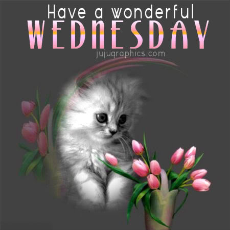 Have A Wonderful Wednesday 2 Graphics Quotes Comments