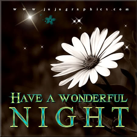 Have A Wonderful Night 11 Graphics Quotes Comments