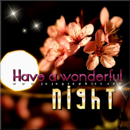 Have A Wonderful Night 4 Graphics Quotes Comments Images Amp Greetings For Myspace Facebook