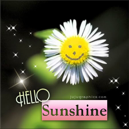 Hello Sunshine Graphics Quotes Comments Images Amp Greetings For Myspace Facebook Twitter