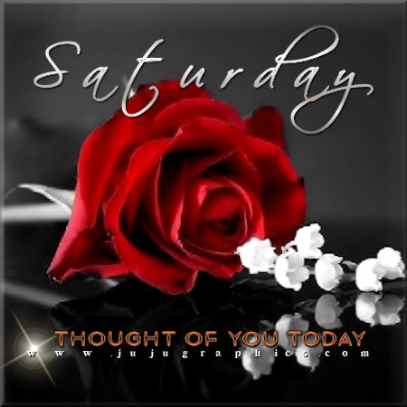 Saturday Thought Of You Today Red Rose Graphics Quotes Comments Images Amp Greetings For
