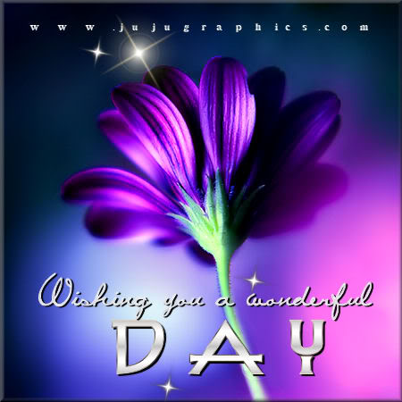 Wishing You A Wonderful Day Graphics Quotes Comments