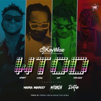 DJ Kaywise, Mayorkun, Naira Marley, Zlatan — What Type Of Dance