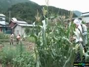 田舎のばばあエロ過ぎ!色気満点な私生活のエロスな動画像無料