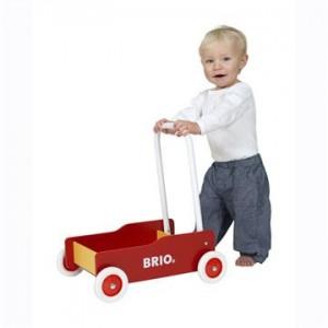Brio-313500-1