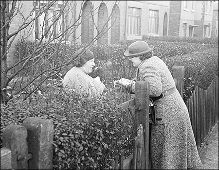 The good-old fashioned fence; venerable ancestor of online word of mouth.
