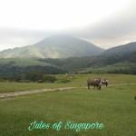 Taiwan Guide: Yangmingshan Hiking Trail + Beitou Hot Springs (*Directions & Google map links…