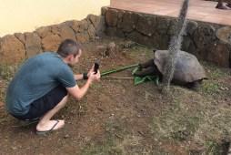 'La Galapaguera', a breeding center for Galapagos turtles