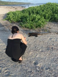 Jules tries to capture this iguana's best side ('Playa La Loberia' in San Cristobal)