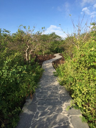 Everything is remarkably well maintained. This path leads to the viewpoint in 'Las Tijeretas', in San Cristobal