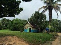 Can you imagine going to school in the middle of the jungle? Well, that's exactly what happens here