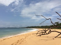 It's not easy to access these beaches, and that explains how they are so desert and well preserved. This one is on the northern tip of the island