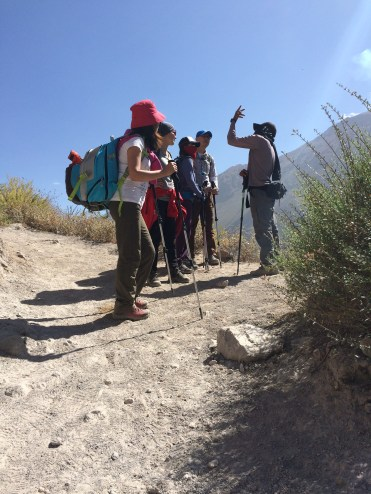 Rafa talks about how the locals make use of Colca's flora