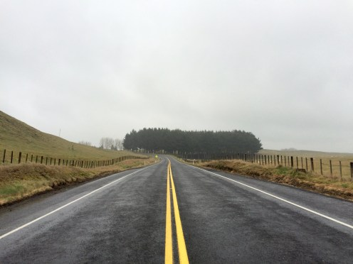 New Zealand's countryside is beautiful even in lousy weather...