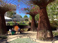 The garden was designed by Robert Irwin, and was one of Jules' favorite parts of the Getty