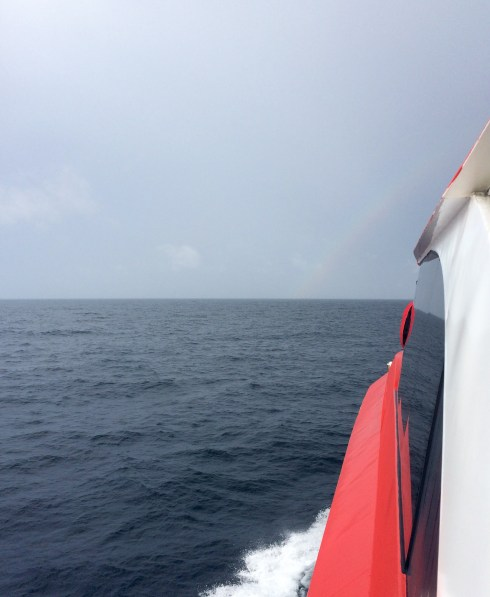 On our way to see the humpback whales! The rain was annoying, but treated us with to a nice rainbow