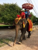 If you really really (really) want to do an elephant ride, make sure the animals are well treated, as many of these die of exhaustion and malnutrition
