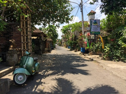 Ubud's less travelled back roads are pretty cool