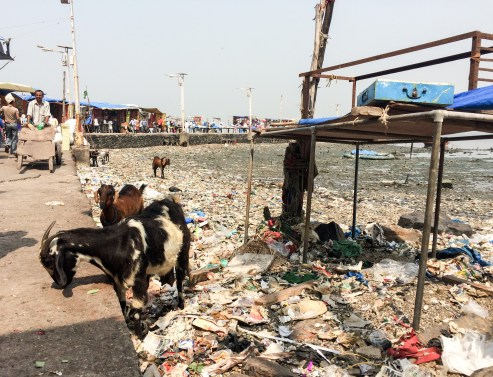 Low tide reveals a vast sea of foul smelling trash around the causeway