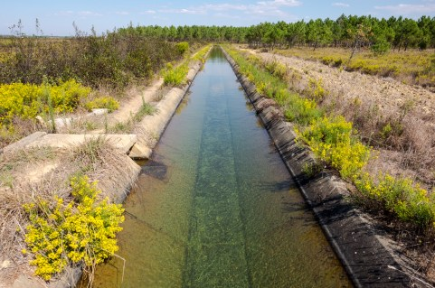 Irrigation canal near Rogil, Portugal (16mm, 1/400s, f7.1, ISO 200)