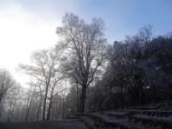 Wanderung im Pfälzer Wald