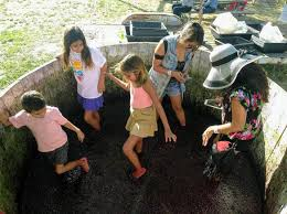 Children stomping grapes