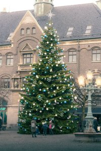 Christmas tree in Scandinavia