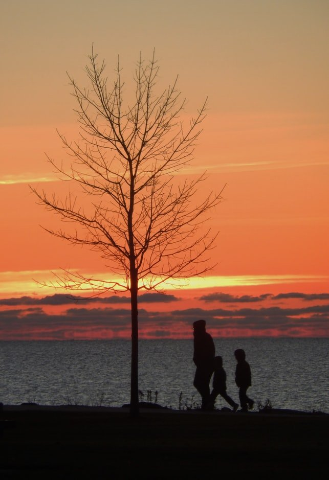 Father walking in sunset with kids