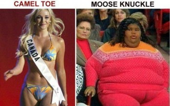 camel toe vs moose knuckle