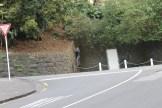 Guy randomly rock climbing in the city...