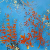 Blue and Orange by Henrik Simonsen