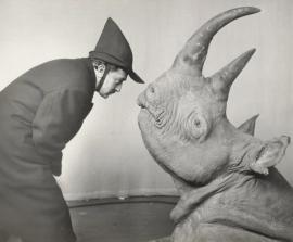 dali with rhino