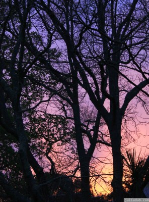 pratt st sunset 2