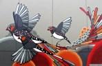 Melbourne Graffiti May 20131 084