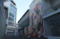 All Fresco Auckland Street Art May 2013 031