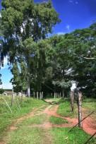 Paisagem rural 4