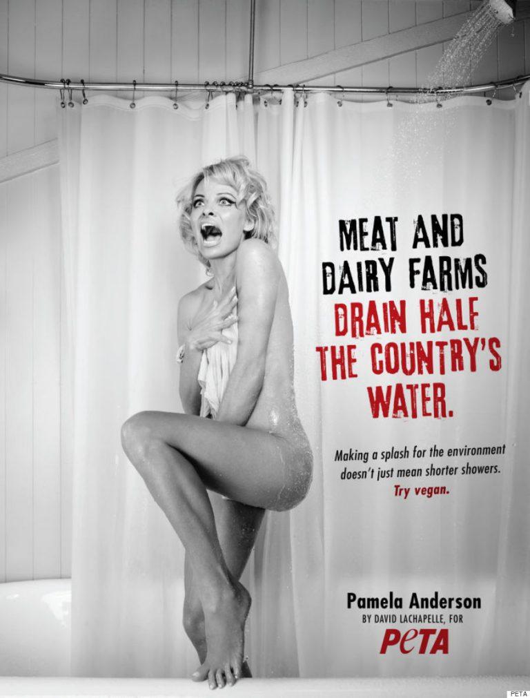 Pamela Anderson. Peta
