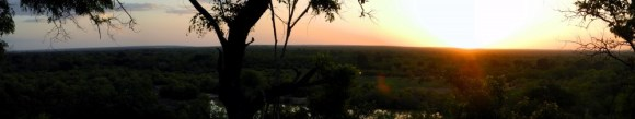 Sunset, Mole National Park