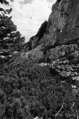 Highline_LechnerKoepfl_Vale-13