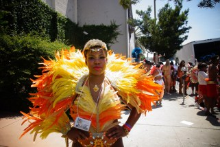 2014 Hollywood Carnival (Julianspromos) (02)