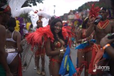 2014 West Indian Day Carnival (Julianspromos) (19)