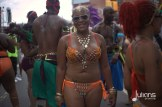2014 West Indian Day Carnival (Julianspromos) (21)