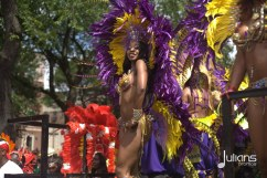 2014 West Indian Day Carnival (Julianspromos) (46)